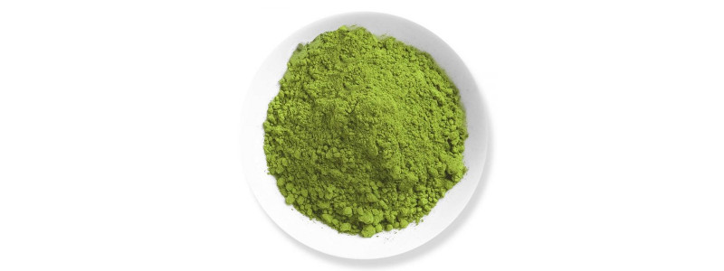Kratom study on animals relieves pain, aids opioid withdrawal